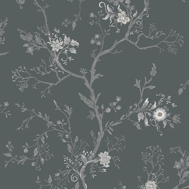 Grey Effie - 10/50289