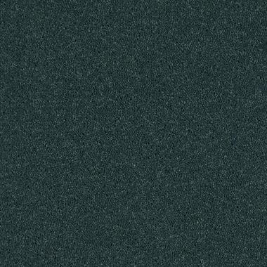 Blue Juniper - 73482