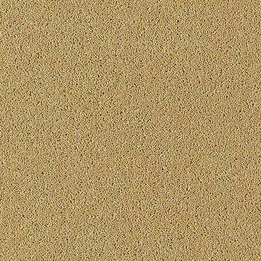 Kalahari Desert - B186