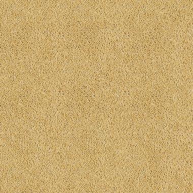 Desert Sand - 20682
