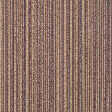 Coastal Cord - 5/38317