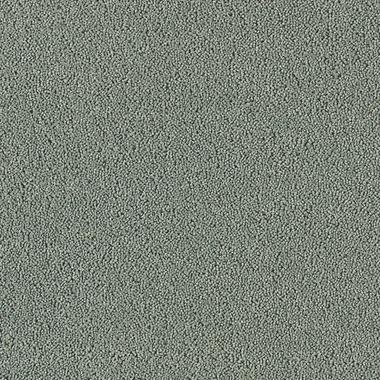 Silver Sage - 57482