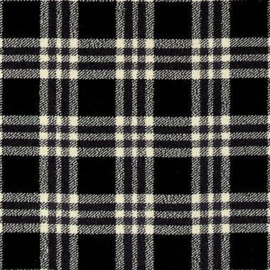 Border Plaid - 9/17089