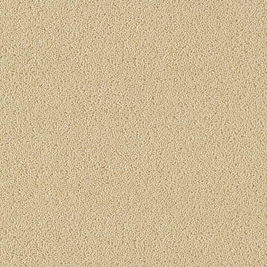 Indian Ivory - 26282