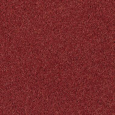 Cajun Spice - 12782