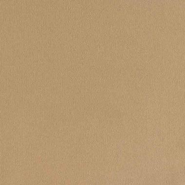 Custard Cream - EV392